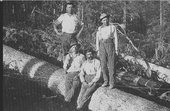 1905 - Nevada USA) - Un gruppo di boscaioli di origini lunigianesi