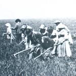 """1895 - Campagna romana: una compagnia di guitti esegue la """"mondarella"""""""